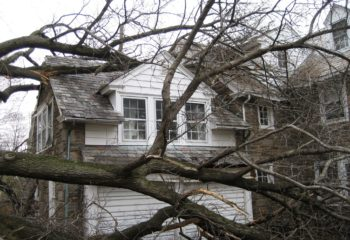 Emergency Tree Through House